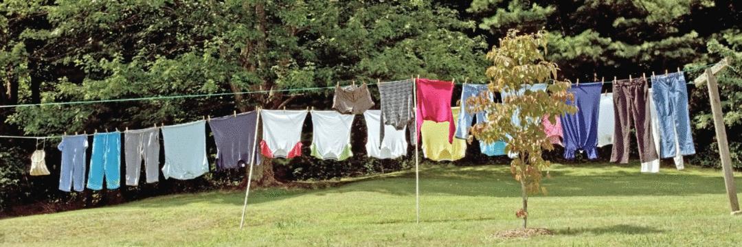 Emoções e máquina de lavar: semelhança ou diferença?